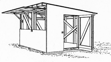 12x12 Shed With Pop-Up