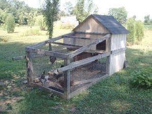 Check out this portable chicken coop I built for my grandson